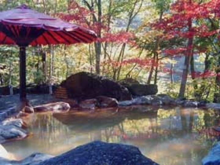温泉 山梨 赤石